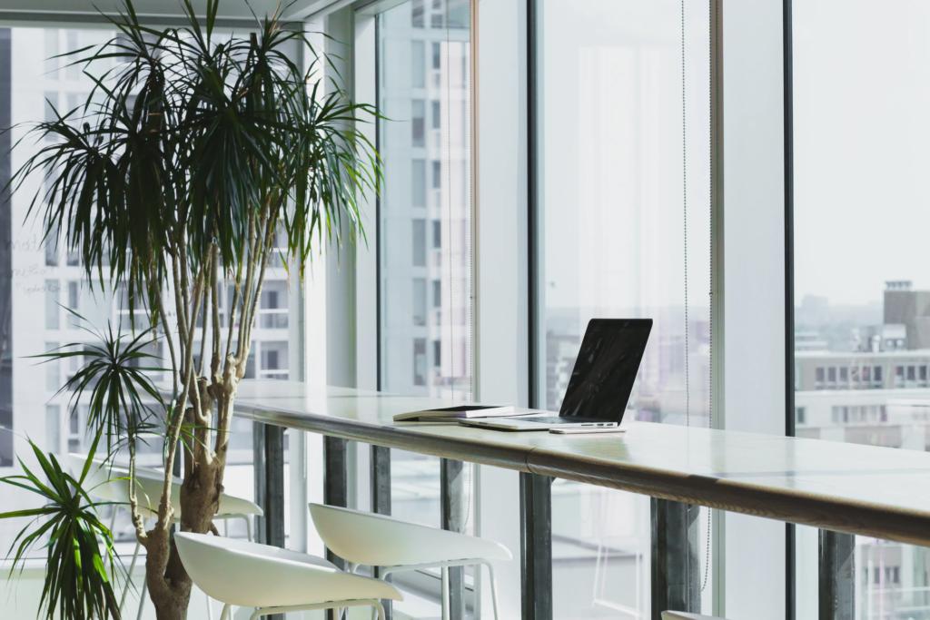 Office embracing natural light
