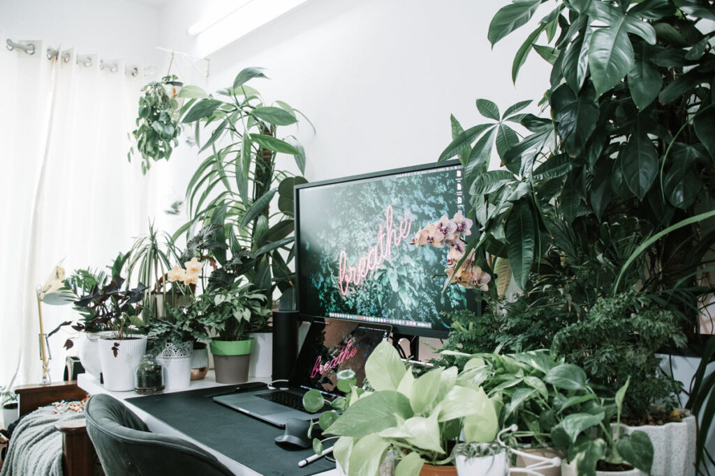 Home office surrounded with green plants